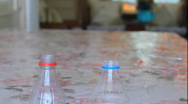 6 Best ideas to recycle plastic bottle3