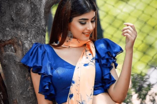 Stylish blouse sleeve designs 18