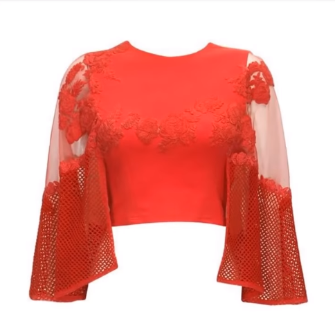 red blouse with net sleeve