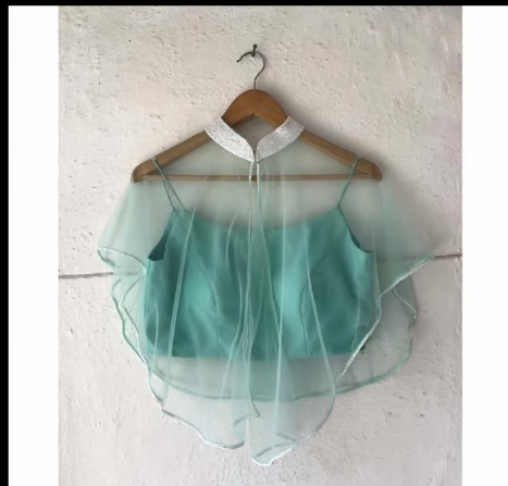 sleeveless blouse with an outer collar net